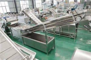 Wet-Type-Garlic-Stone-Removing-Machine-for-Garlic-Slice-Production-Line