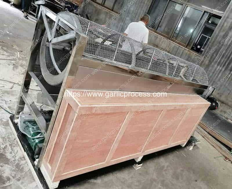 Automatic-Garlic-Seeds-Size-Sorting-Machine-for-Thailand-Customer
