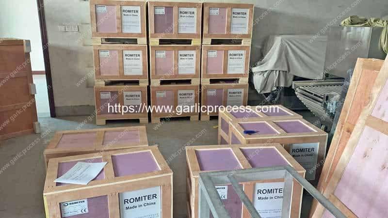 Garlic-Root-and-Stem-Cutting-Machine-for-Ukraine-Customer