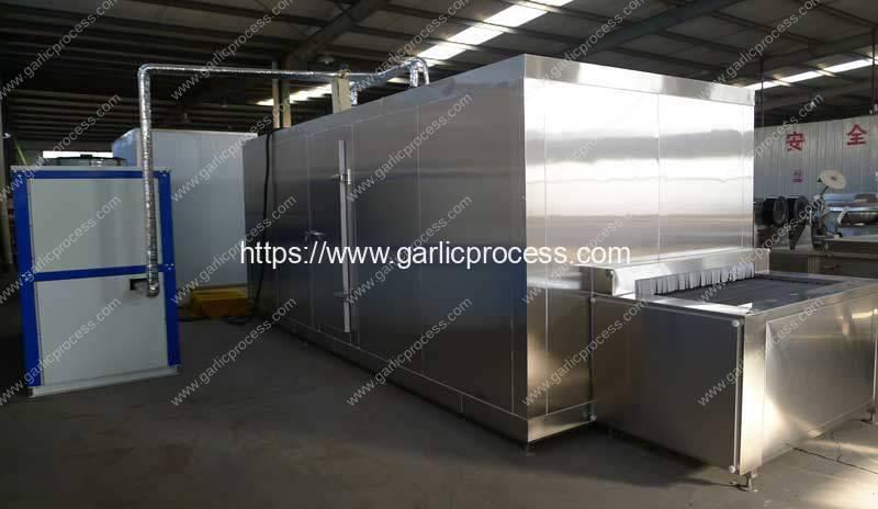 Garlic-Clove-IQF-Machine-Manufacture