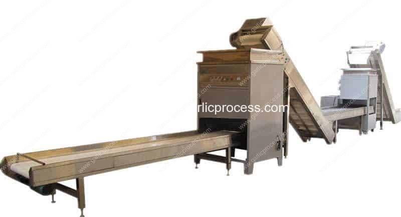 600KG-Per-Hour-Garlic-Clove-Production-Line
