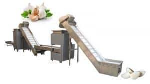 600kg-Garlic-Clove-Breaking-Peeling-Production-Line