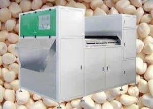 Full-Automatic-Peeled-Garlic-Clove-Color-Sorter-Machine
