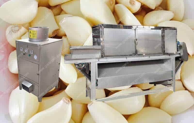 Cylinder-Drum-Type-Garlic-Peeling-Machine-and-Chain-Type-Garlic-Peeling-Machine
