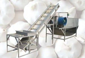 Automatic Garlic Separating and Peeling Machine