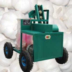 Automatic Discharging Fresh Garlic Root and Leaf Cutting Machine
