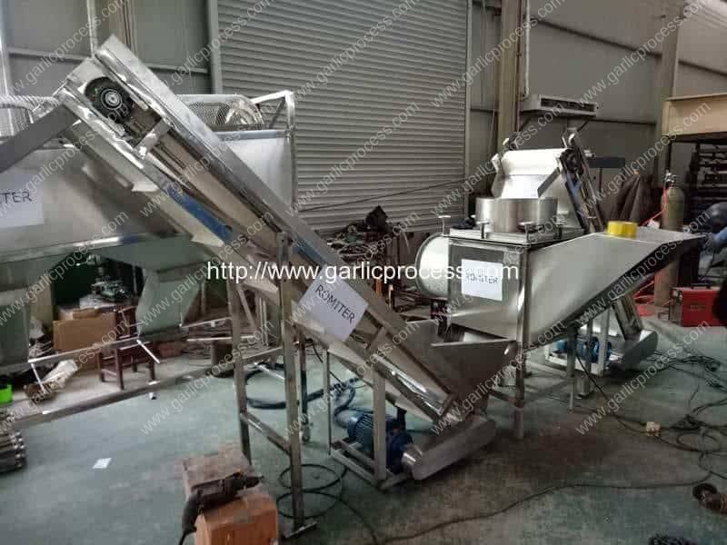Stainless-Steel-New-Zealand-Garlic-Breaking-Machine-with-Elevator