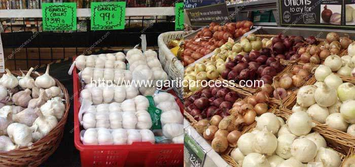 American-garlic-and-onion-processing-machine