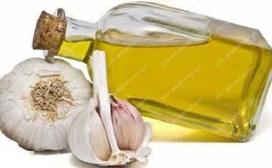 garlic-oil-production-line-in-America