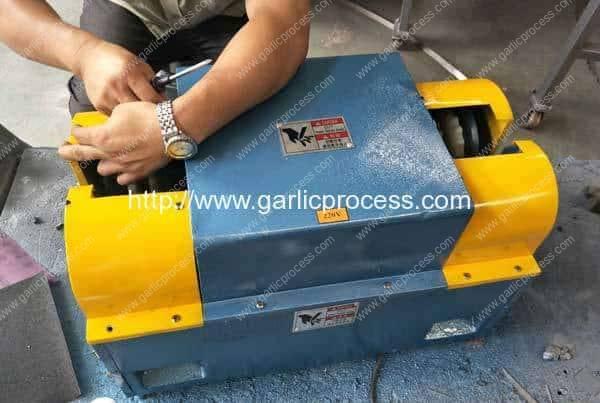 Garlic-Stem-Cutting-Machine-for-Canada