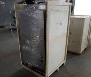 Romiter-200kg-Per-Hour-Garlic-Peeling-Machine-for-Poland-Customer