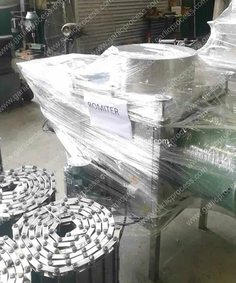Automatic-Garlic-Clove-Breaking-and-Peeling-Machine-for-Spain-Customer