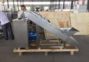 Automatic-Garlic-Separating-Machine-with-Feeding-Elevator-for-Canada-Customer