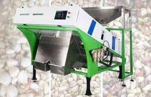 Automatic-Small-Garlic-Clove-Color-Sorting-Machine