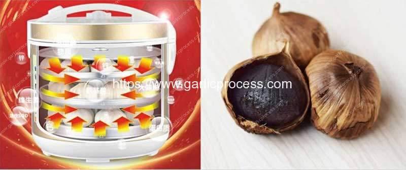 Domestic-Black-Garlic-Process-Making-Machine