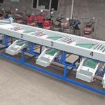 Automatic Garlic Size Sorting Machine for Ukraine Customer