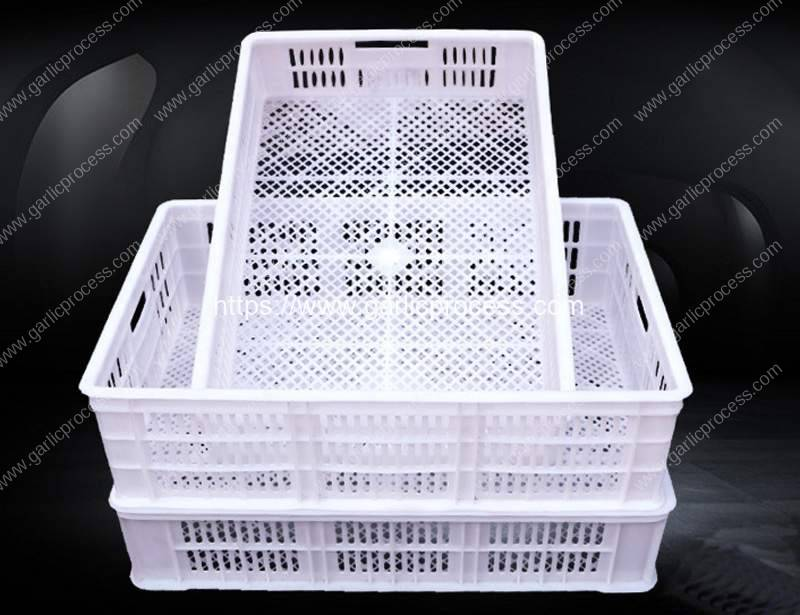 Back-Garlic-Plastic-Storage-Container