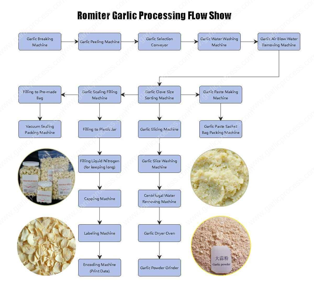 Romiter-Garlic-Processing-Flow-System-Drawing