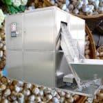 Automatic Mini Size Garlic Breaking Peeling Machine