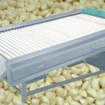 Automatic Garlic Clove Wipe Dry Machine