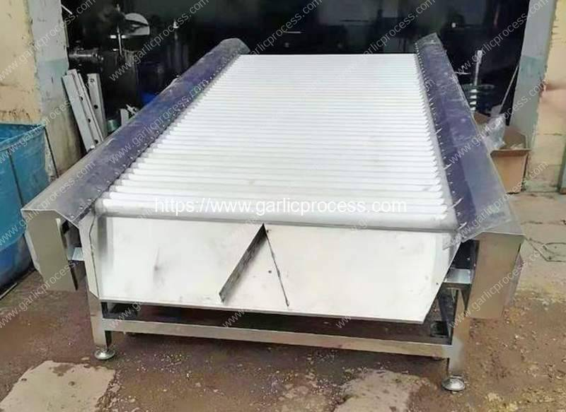 Automatic-Garlic-Clove-Wipe-Dry-Machine
